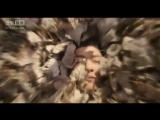 ВуСинь: Истребитель демонов / WuXin: The Monster Killer  - Китай, 2015
