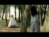 Белый орел -  Без тебя не могу