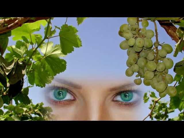 У моей любви Глаза Зелёные ....Эдуард Изместьев