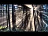 Lind Erebros - Valar Glory
