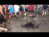Crazy Mud Worm  La Roux - Bulletproof ( Gamper &amp Dadoni Remix)