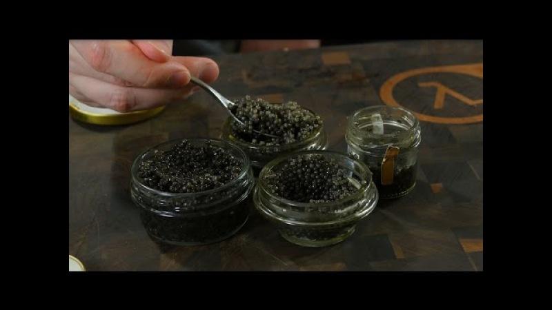 Дегустейшн 4 видов черной икры для подписчиков с серебряными ложечками