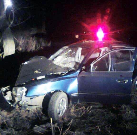 Под Таганрогом Hyundai Accent врезался в дерево