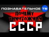 Почему уничтожили СССР (Познавательное ТВ, Николай Стариков)