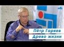 «Древо жизни» Пётр Гаряев, Лингвистико-Волновая Генетика