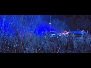 Красотки в бегах. Эксклюзивный отрывок - Сцена с оленем (2015) 1080р