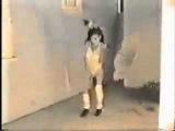 самое страшное видео!!!!Психоделика 25 кадр