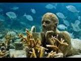 Подводные обитатели - странные существа морской цивилизации