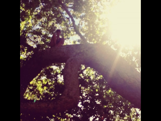 "Sofia Boutella on Instagram Mowgli training for Ya What @adamfergus"""