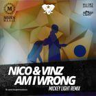 Nico & Vinz - Am I Wrong (Mickey Light Remix) [2014]