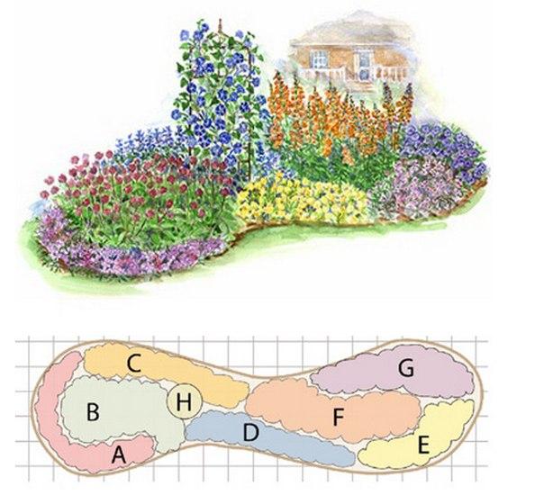Цветущие однолетние растения