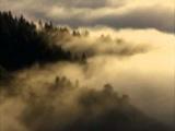 Брамс  Интермеццо Op 118 №6, d moll - Глен Гульд