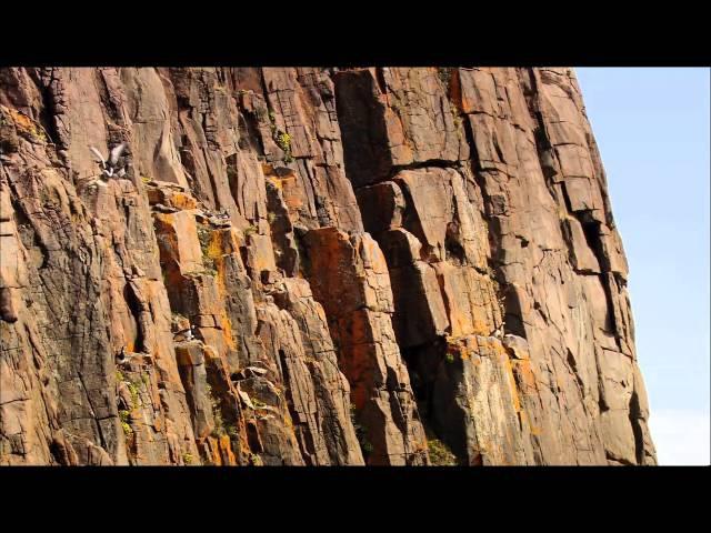 Дикая природа Скандинавии. 6. Гренландия / Greenland.1080p
