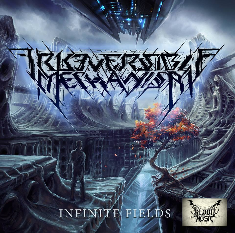 Irreversible Mechanism - Infinite Fields