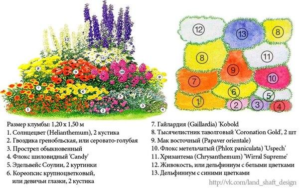 Схема создания клумбы