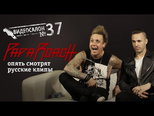 Papa Roach смотрят русские клипы Видеосалон №37