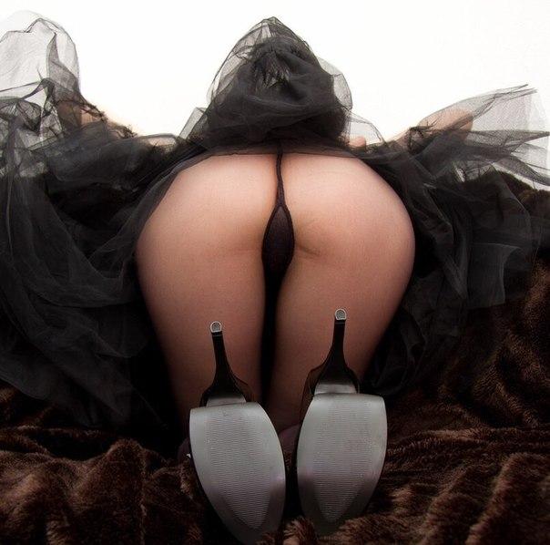 голой женской попки