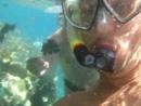 Египет 2014. Красное море. Рыбки и другие обитатели красного моря.