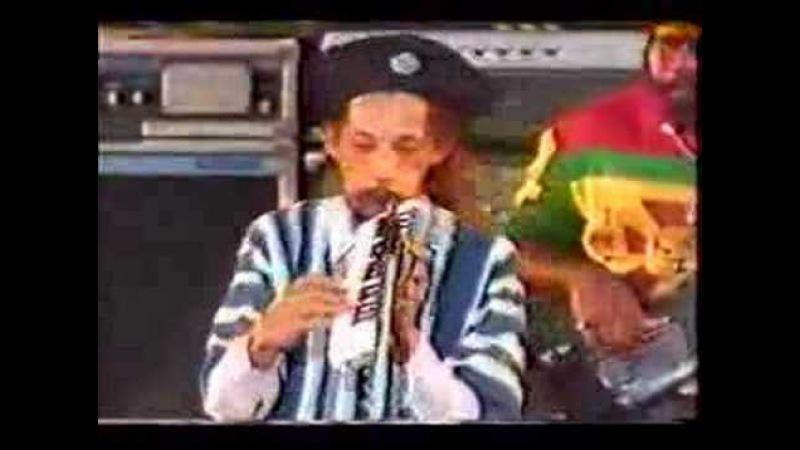 AUGUSTUS PABLO JAVA LIVE 1986