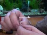 Зимняя рыбалка - жерлицы своими руками