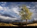 То не ветер ветку клонит Лучинушка - Поёт Юлия Боголепова