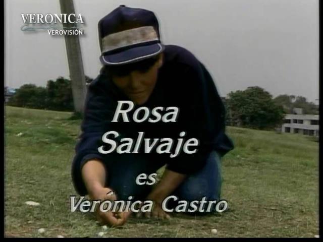 Дикая роза / Rosa salvaje (1987 – 1988)