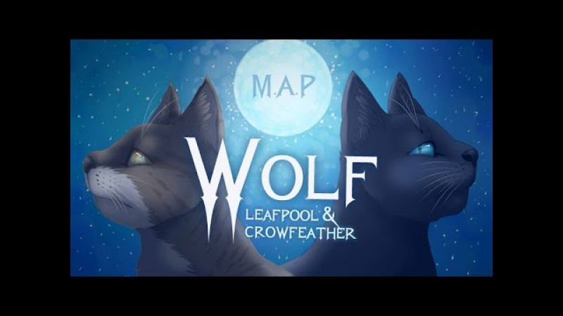 Wolf - Leafpool Crowfeather [Complete Warrior Cats M.A.P]