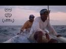 Santa Cruz del Islote - Trailer