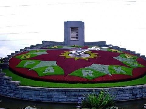 Клумбы на даче-цветочные часы в городе Ниагара-Парк