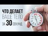 Что делает ваше тело за 30 секунд