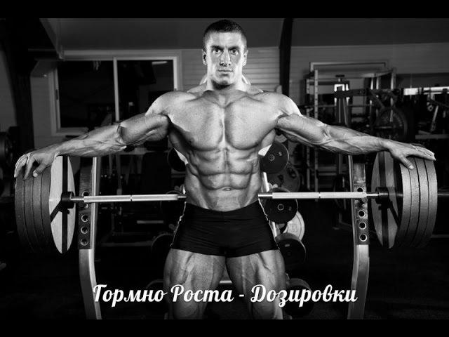 ГОРМОН РОСТА - ДОЗИРОВКИ от HeavyMetalGYM