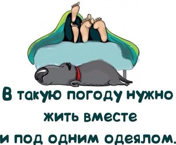 Сергей Костылев | Дмитров