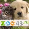 www.zoo43.ru