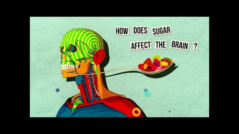 How sugar affects the brain Nicole Avena