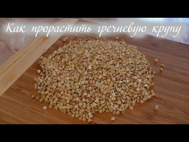Как прорастить гречку и рецепт из нее