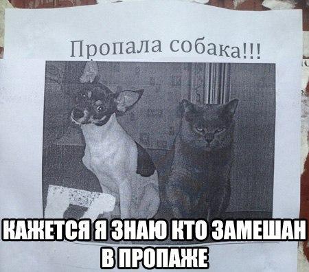 7V_on4msXT4.jpg