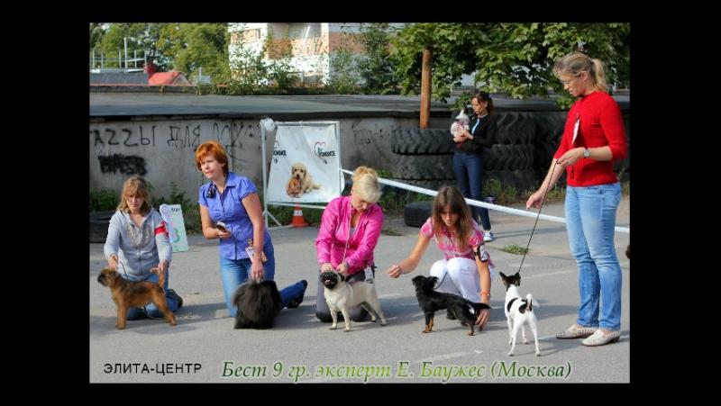 Вероника Стайл Интер Актив