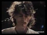 Van Der Graaf Generator - LOST