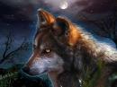 Böhse Onkelz Zieh' mit den Wölfen