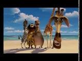 Мадагаскар 2 с гоблинским переводом