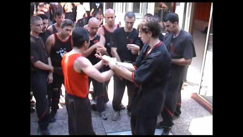 Sifu Tassos WT Livorno 1998 VingTshun