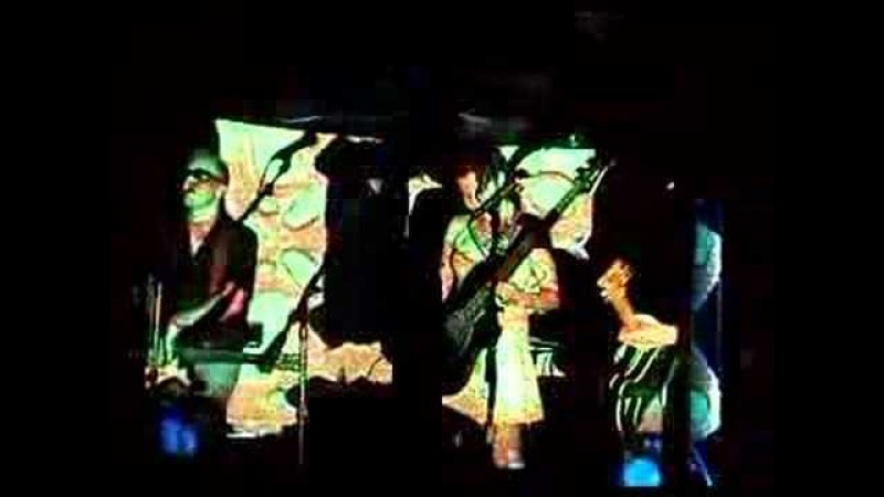 The Vandelles - Losing Touch With My Mind - Spacemen 3(live)