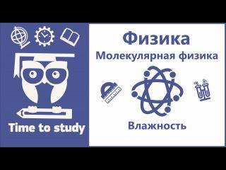 Физика. Подготовка к ЕГЭ. Урок 7. Влажность