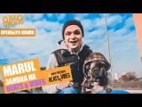 Marul - По Делу Случая (Pit Bull Battle 2) (Directed by D1M.J Media Prod.)
