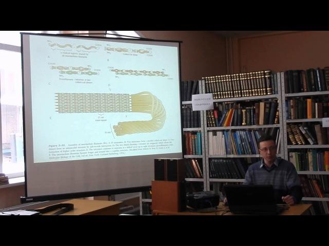 Механизмы морфогенеза (Лимнологический институт СО РАН)