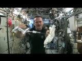 Что будет если выжать мокрое полотенце в космосе