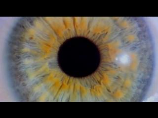 128 ударов сердца в минуту (We Are Your Friends) (2015) трейлер русский язык HD
