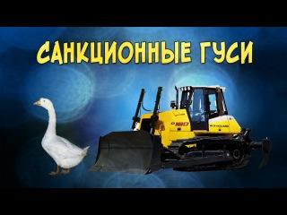 Песня про санкционных гусей