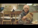 Время обедать / Lets Eat - 03 серия Elegra - видео ролик смотреть на Video.Sibnet