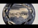 Calyx Teebee: The Essential Mix!!